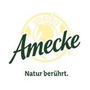 Amecke GmbH & Co. KG